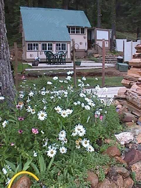 cabin and flowers