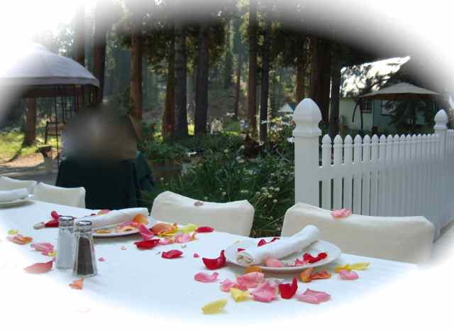 reception dinner location california